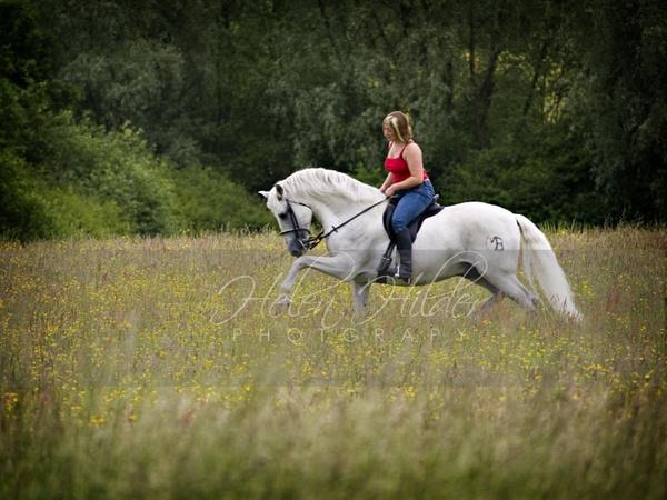 spanish stallion by BoudoirByHelen