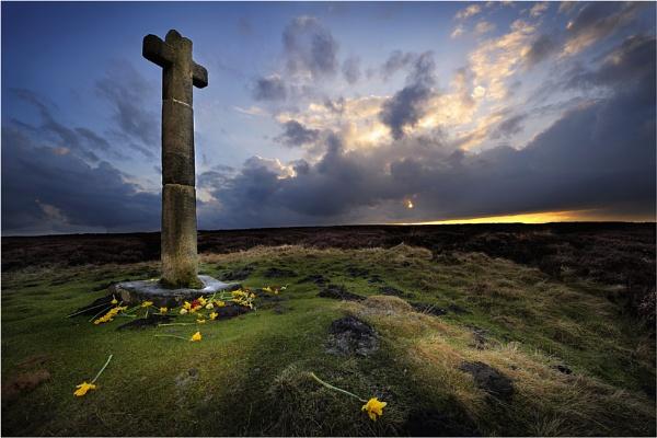 Daffodils - Ralphs Cross by iansnowdon