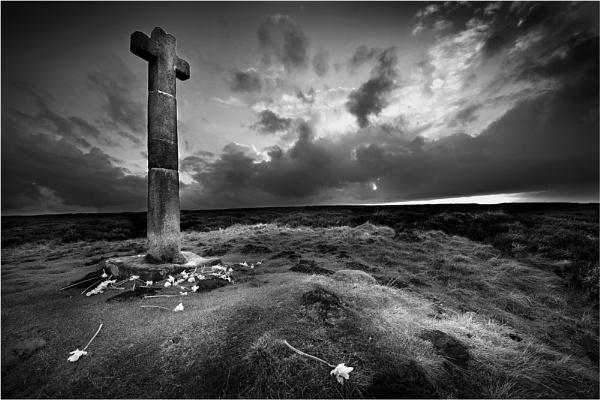 Daffodils - Ralphs Cross 2 by iansnowdon