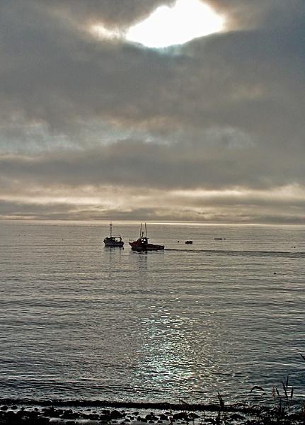 Fishing vessels at Jackson\'s cove by Sasanach