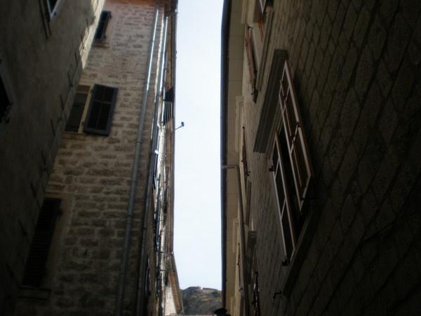narrow by Virna