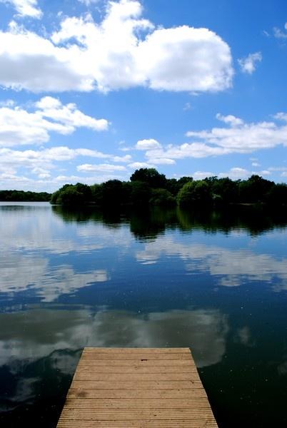 Lake View by LadyBug407