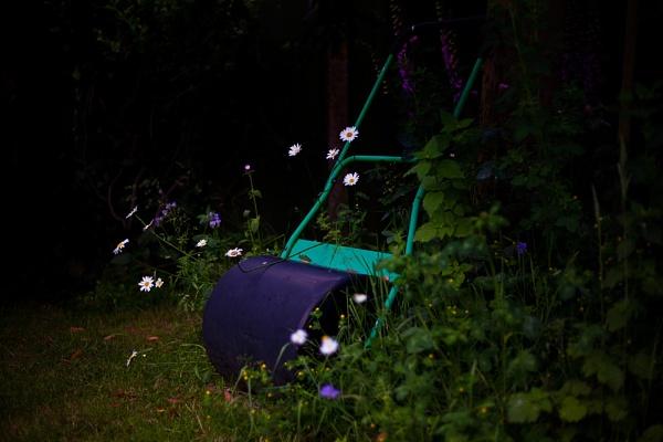 Garden Roller by markharrop