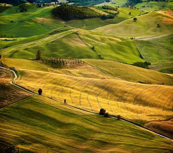 Tuscany Fields by DavePrince