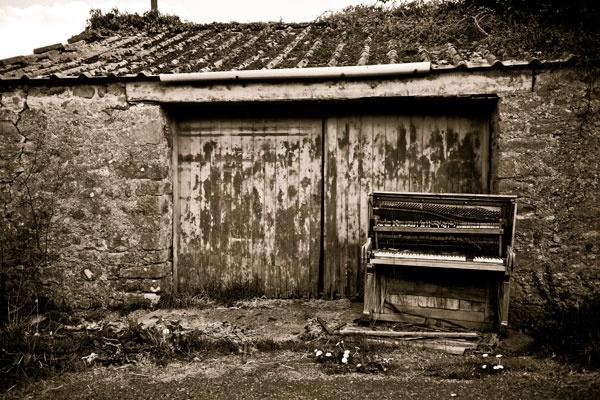 Barn door blues by mutley68