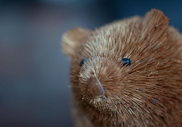 Dusty old bear by joss