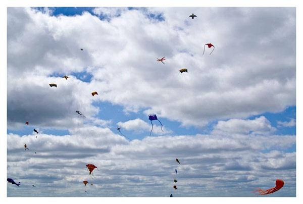 Fun day with Kites by ednys