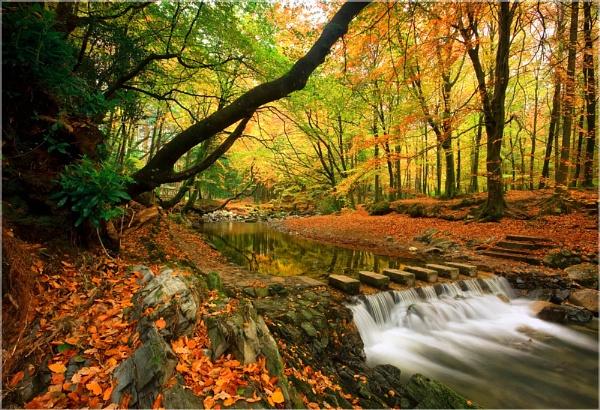Memories of Autumn by Sconz
