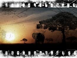 Old Film - Stuart G Loch Photography