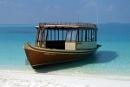 desert island dhoni