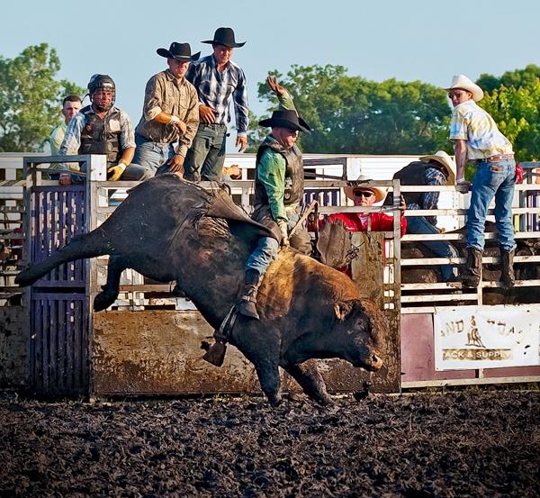 Bull Riders by aneta