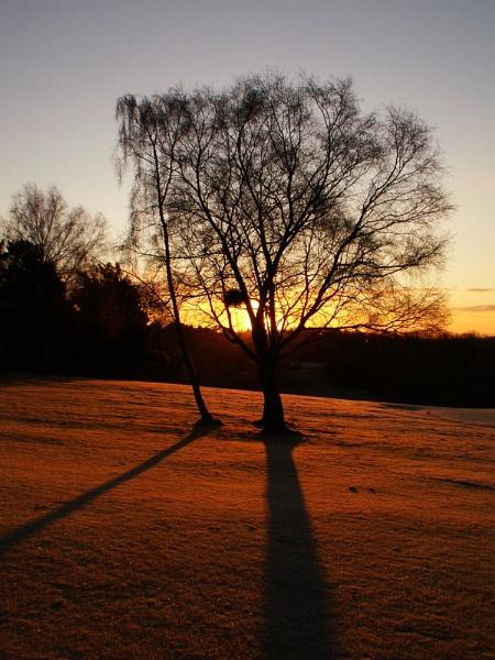 morning sun by paulmeyer