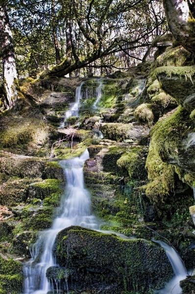 Birks Falls by Chrysis