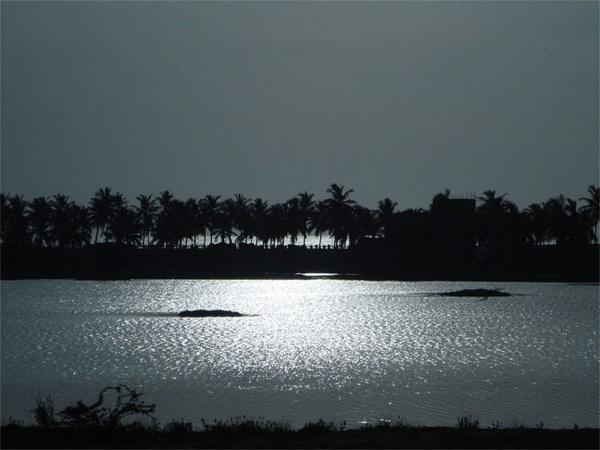 Backwaters by chrisdotcom
