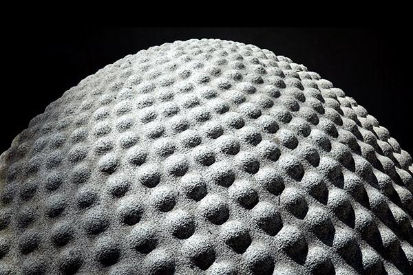 The Seed by hollkj