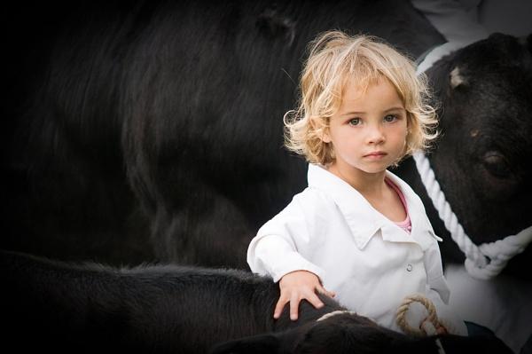 young cattle handler by blackbird