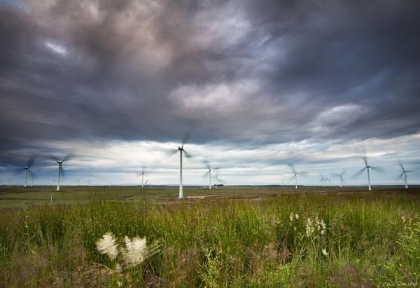 Whitelees Windfarm by brianquinn