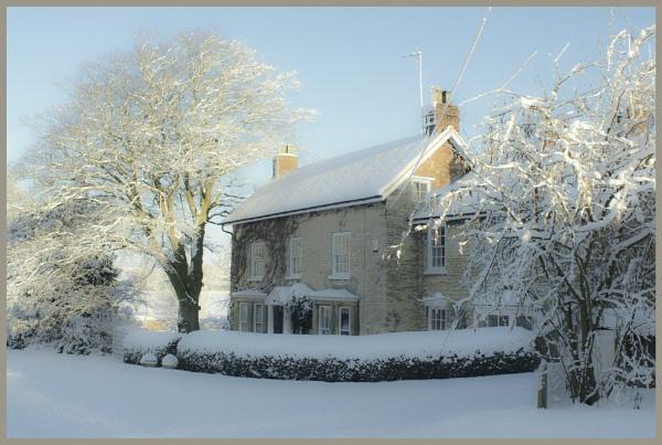 Winter wonderland by Nettles