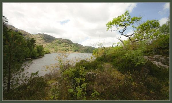 Loch Katrine by Nettles