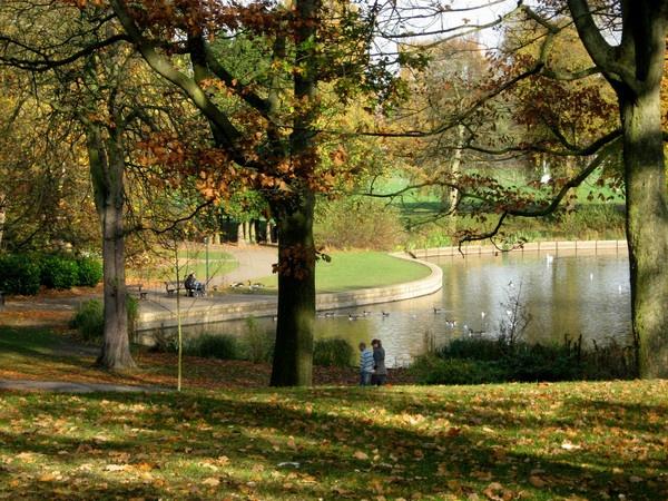 pond... by firepoi69