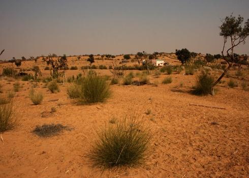 Desrert landscape by dsrathore999