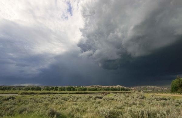 Passing Storm by soppygreatdane
