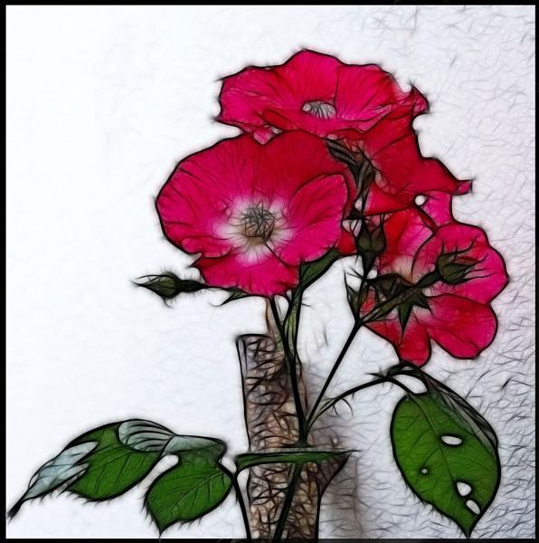 FLOWER3 by Zacian