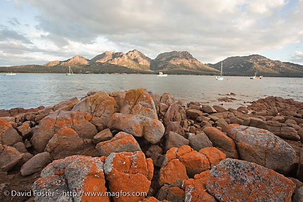 The Hazards at Freycinet National Park by DavidFosterImages
