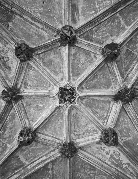 Lacock Cloister Ceiling by Bryn_Jones