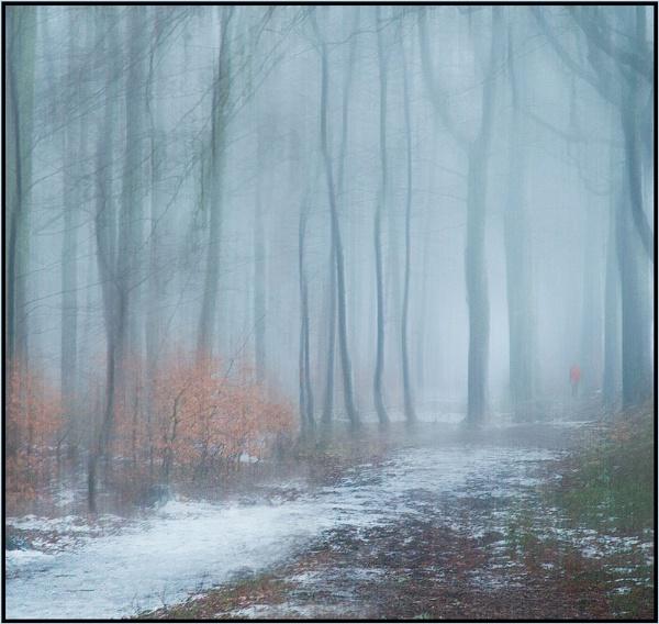 January Walk by MalcolmM