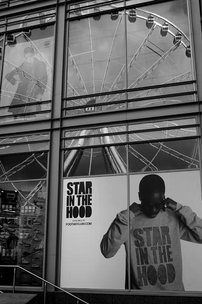 Star by freybird