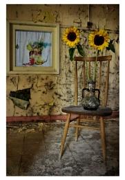 Sunflower Seat.