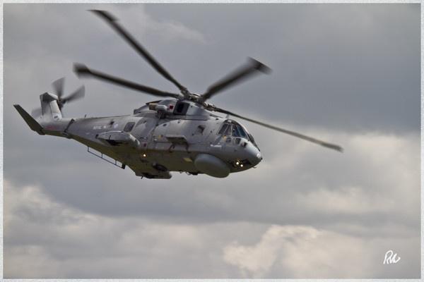 Fly Navy by Doglet