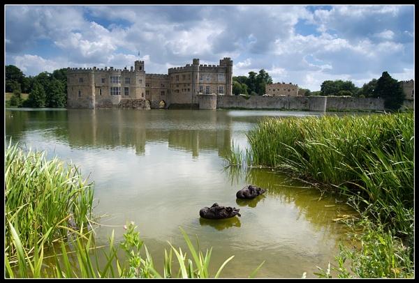Leeds Castle\'s Sleeping Swans by SugarDJ