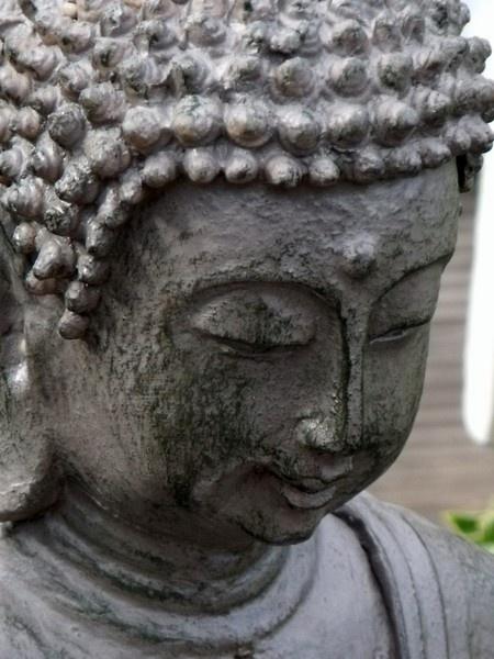 Budda by kibp