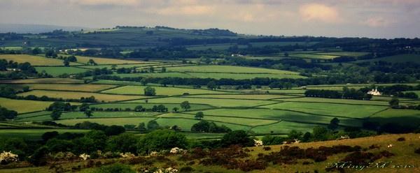 Dartmoor by MingM