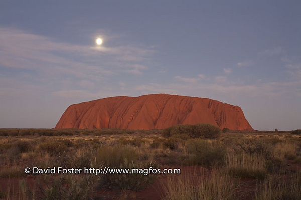 Full Moon Over Uluru by DavidFosterImages