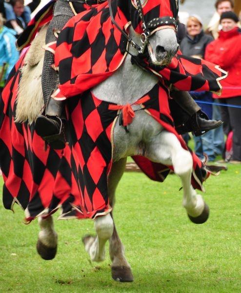 Flying Horse by billmac57
