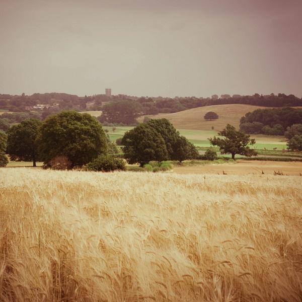 Suffolk Scene by cmf
