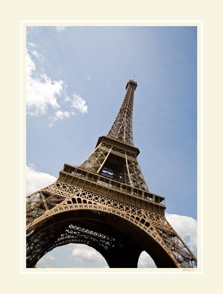 Eiffel Tower by peugeot406