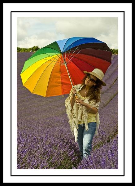 Lavender Girl 3 by paddyman