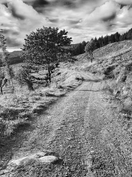 Long Walk by dmull