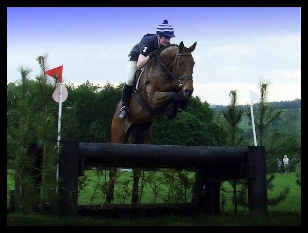 Horse power by tynetoons