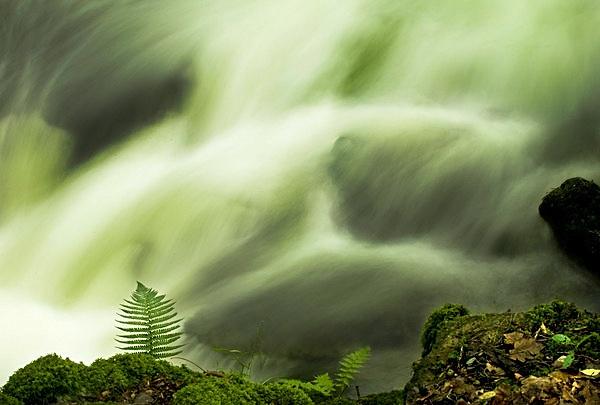 Rydale Cascade by rayportman