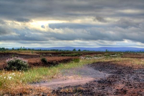 Irish Bogland by Beladd