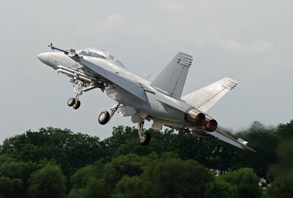 Super Hornet - 2 by mungoray