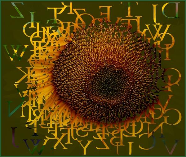 Sunny Alphabet by barbarahirst
