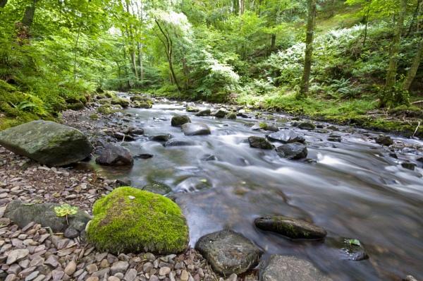 A river runs through it by Wallybazoom