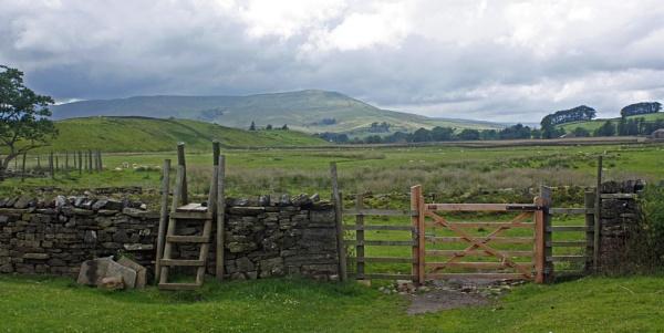 NEW GATE by JOKEN
