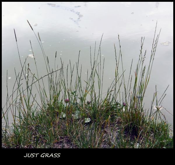 JUST GRASS by JOKEN